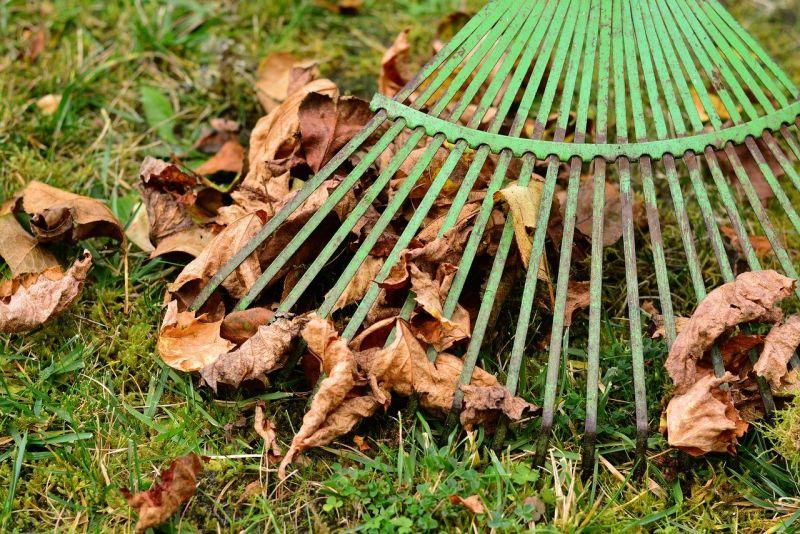 Posprzątaj w ogrodzie