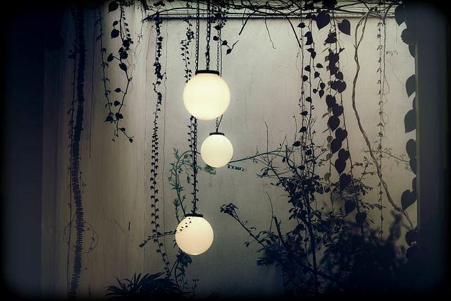 Wprowadź światło do ogrodu