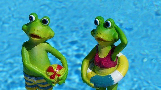 Pływanie w ogrodzie? To łatwe i bez wysiłkowe