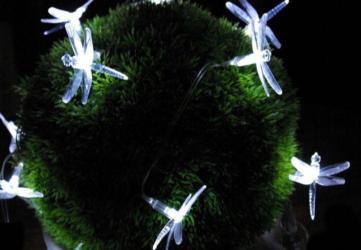 Lampki 24 xLED sznur -ważki