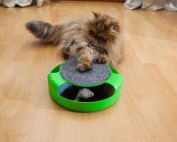 "Zabawka dla kota ""Złap mysz"""